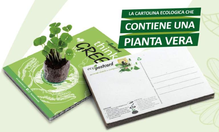 Cartolina con pianta vera