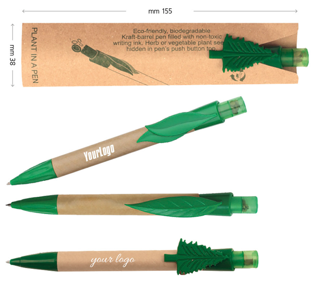 Penna con semi di PINO NERO